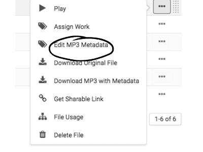 Music Gateway edit metadata tool
