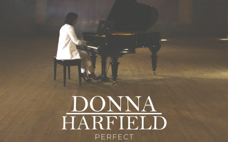Donna Harfield P!nk Perfect Cover