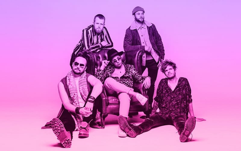 Cousin Avi, 5 piece indie-funk rock band, stand on a ombre pink and purple background