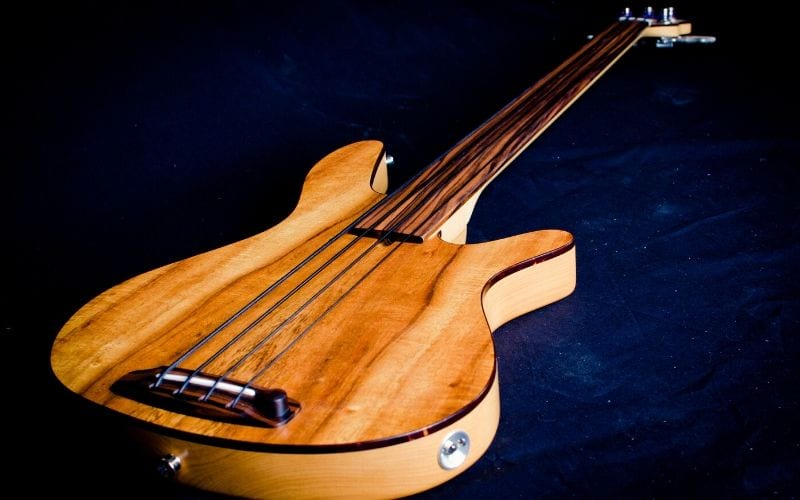 fretless bass guitar
