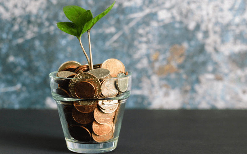 money and a plant in a glass jar