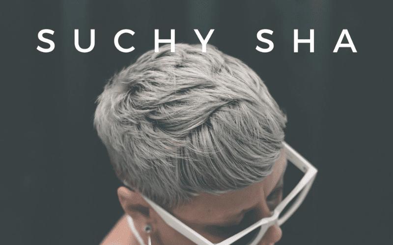 Suchy 'Laylow' Artwork Blog
