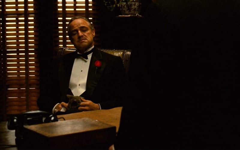 the godfather gordon willis cinematography