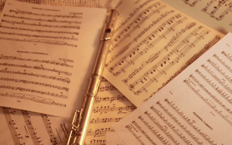Without Music Room's great search filter, it would be a mess of sheet music!