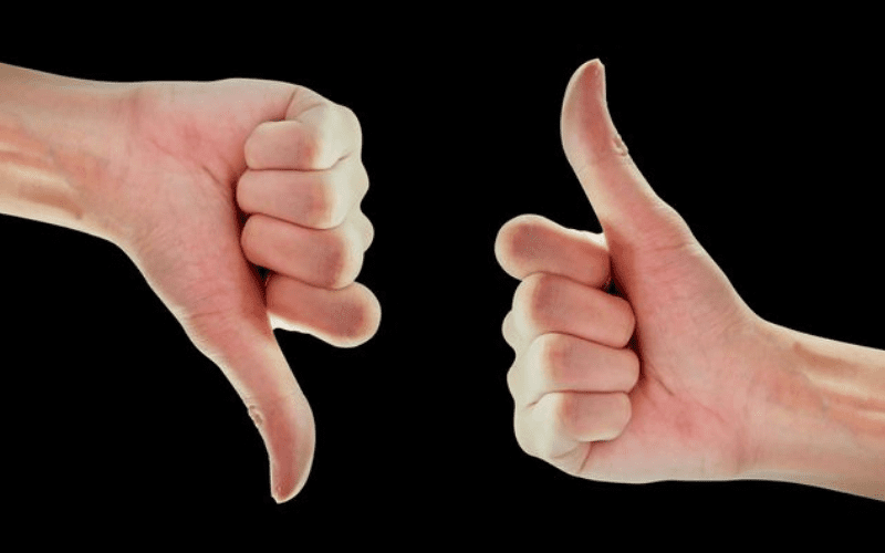 thumbs up or thumbs down critic review