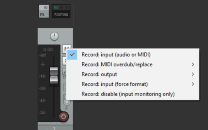 Reaper DAW recording